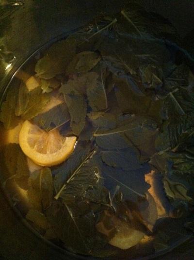 Groene ijsthee met citroen, limoen en verse munt.